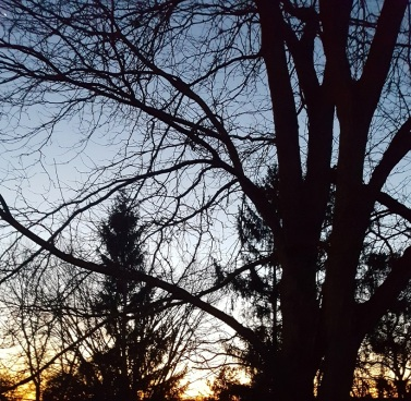 Sunset 2/18/17