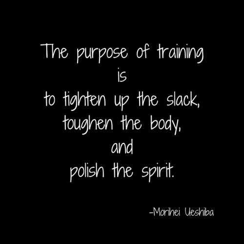The purpose of trainingisto tighten up the slack,toughen the body,andpolish the spirit.