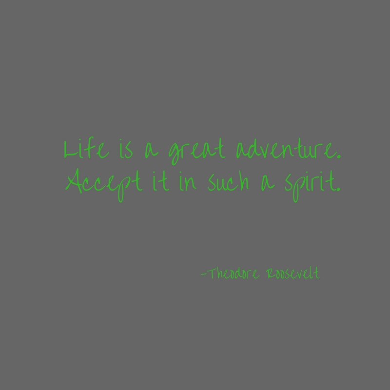 Life is a great adventure.Accept it in such a spirit.