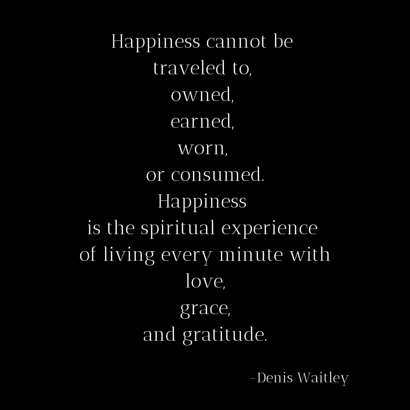 Happiness cannot be traveled to, owned, earned, worn, or consumed. Happiness is the spiritual experience of living every minute with love, grace, and gratitude.